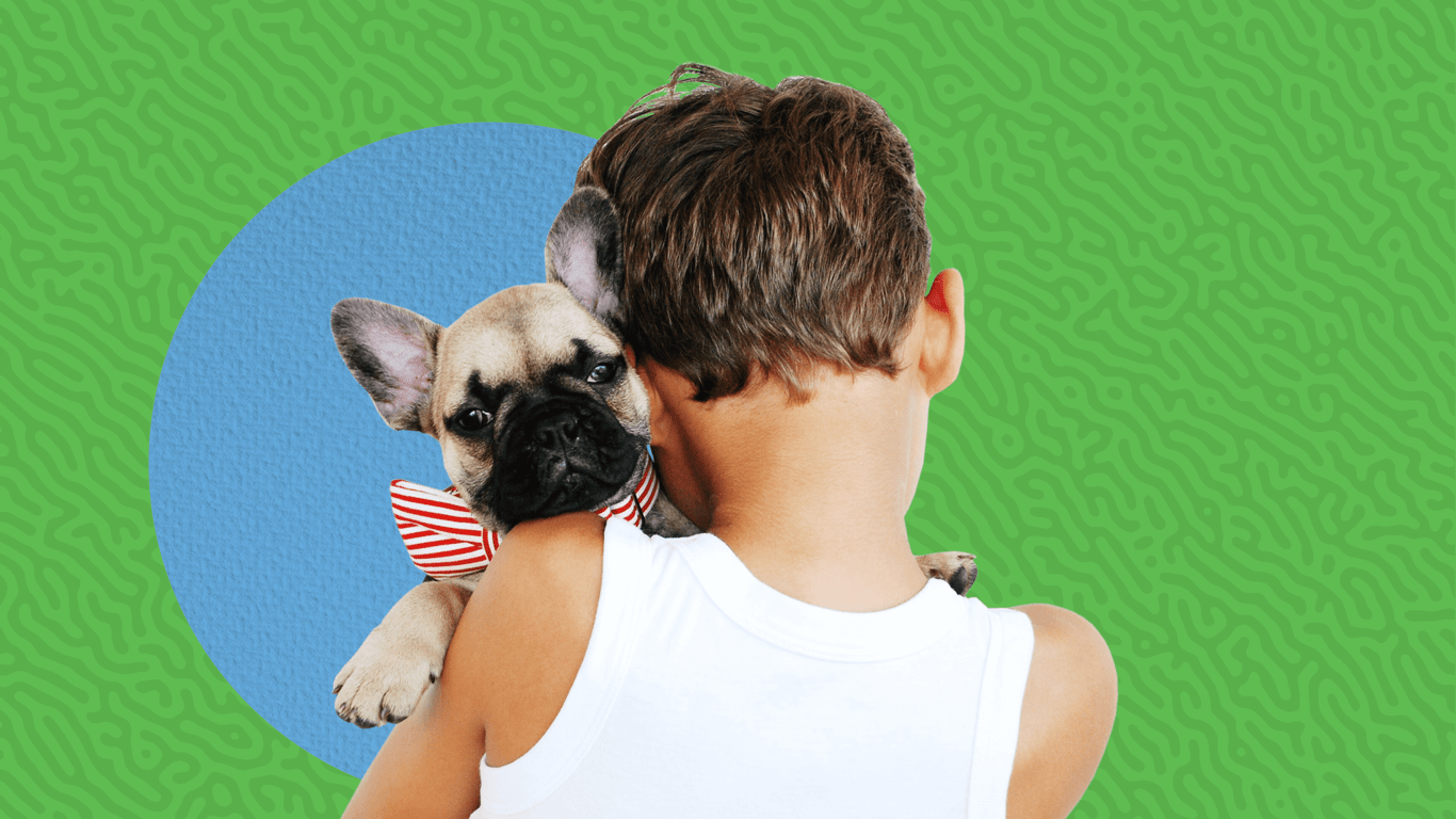 The Ultimate Gift Guide for Pet Lovers